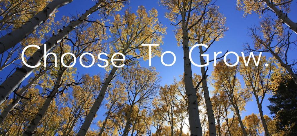 choose_to_grow.jpg